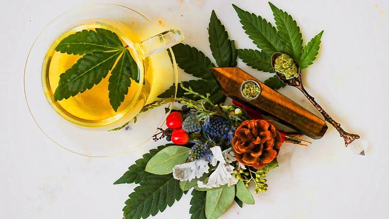 different kinds of terpenes and cannabis leaves and a cup of tea